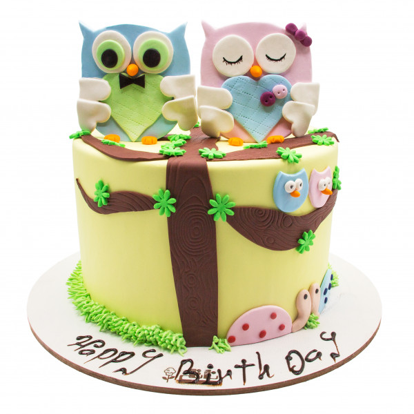کیک تولد دخترانه جغد 3