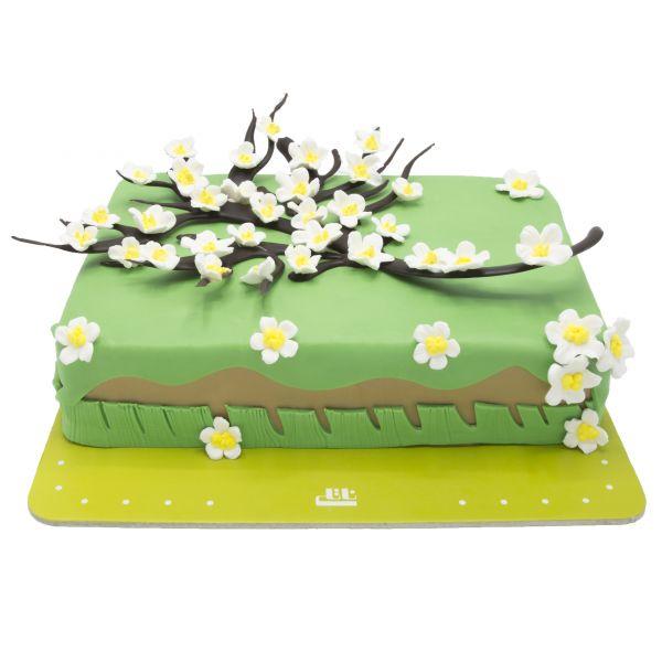 کیک تولد بهاری