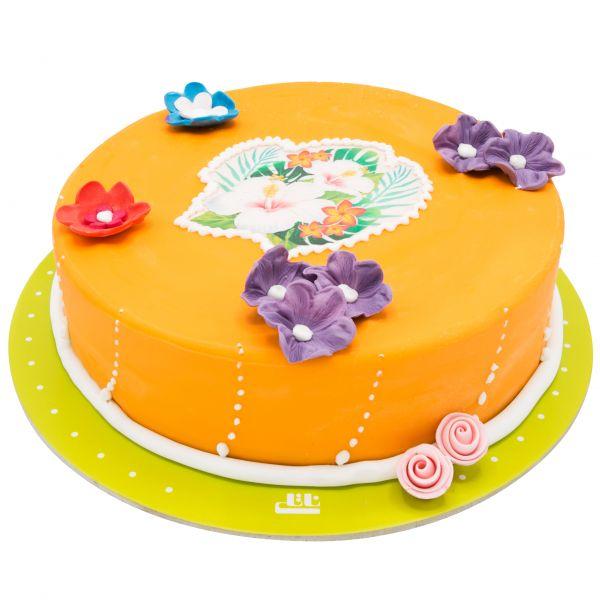 کیک تولد دخترانه راز