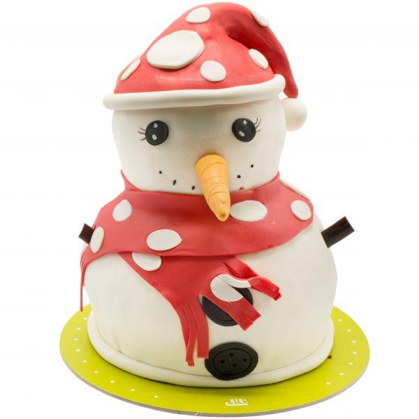کیک تولد آدم برفی 8