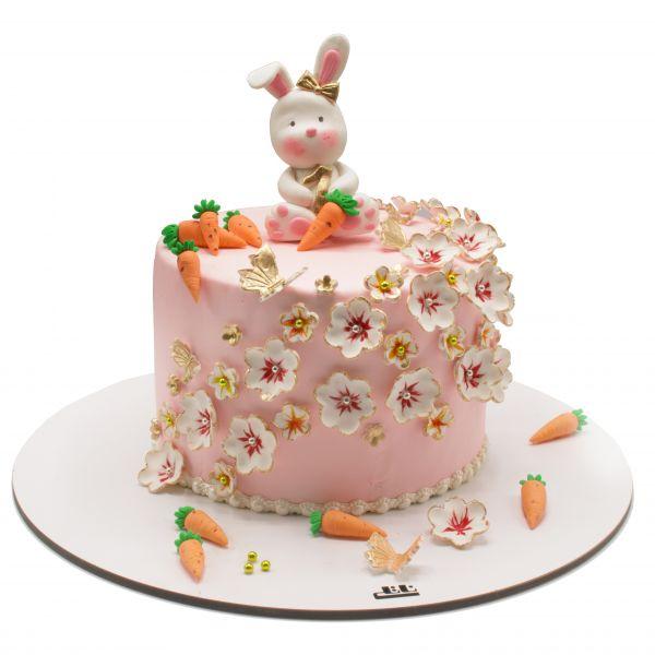 کیک تولد خرگوش 3