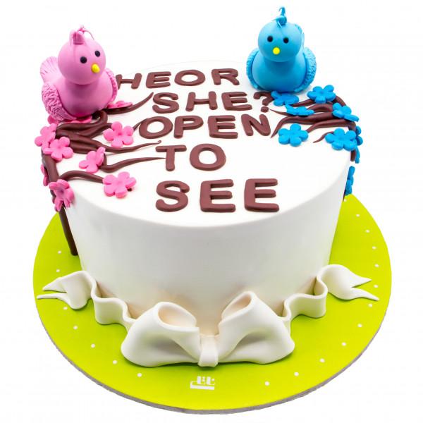 کیک تعیین جنسیت جوجه ها