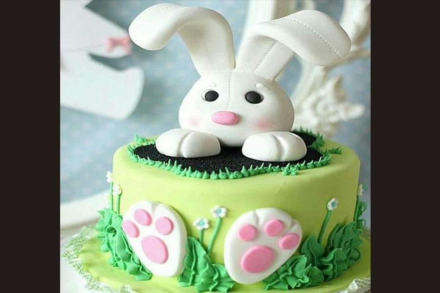 کیک تولد خرگوش 2