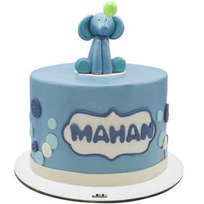 کیک تولد فیل غمگین