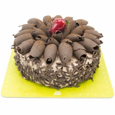 کیک شکلاتی گردویی C32