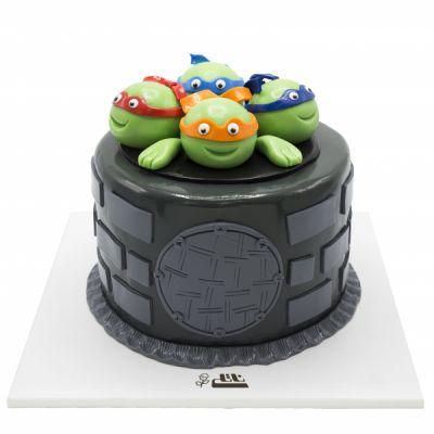 کیک تولد پسرانه لاکپشتهای نینجا 4