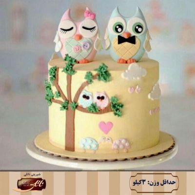 کیک تولد دخترانه جغد 2