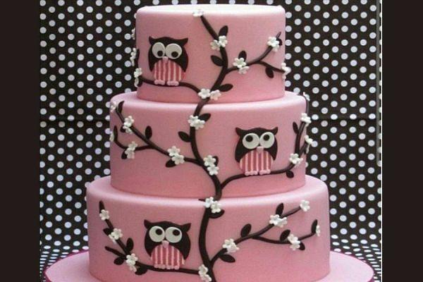 کیک تولد دخترانه جغد 1