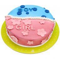 کیک نوزاد دختر و پسر