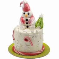 کیک تولد آدم برفی 9